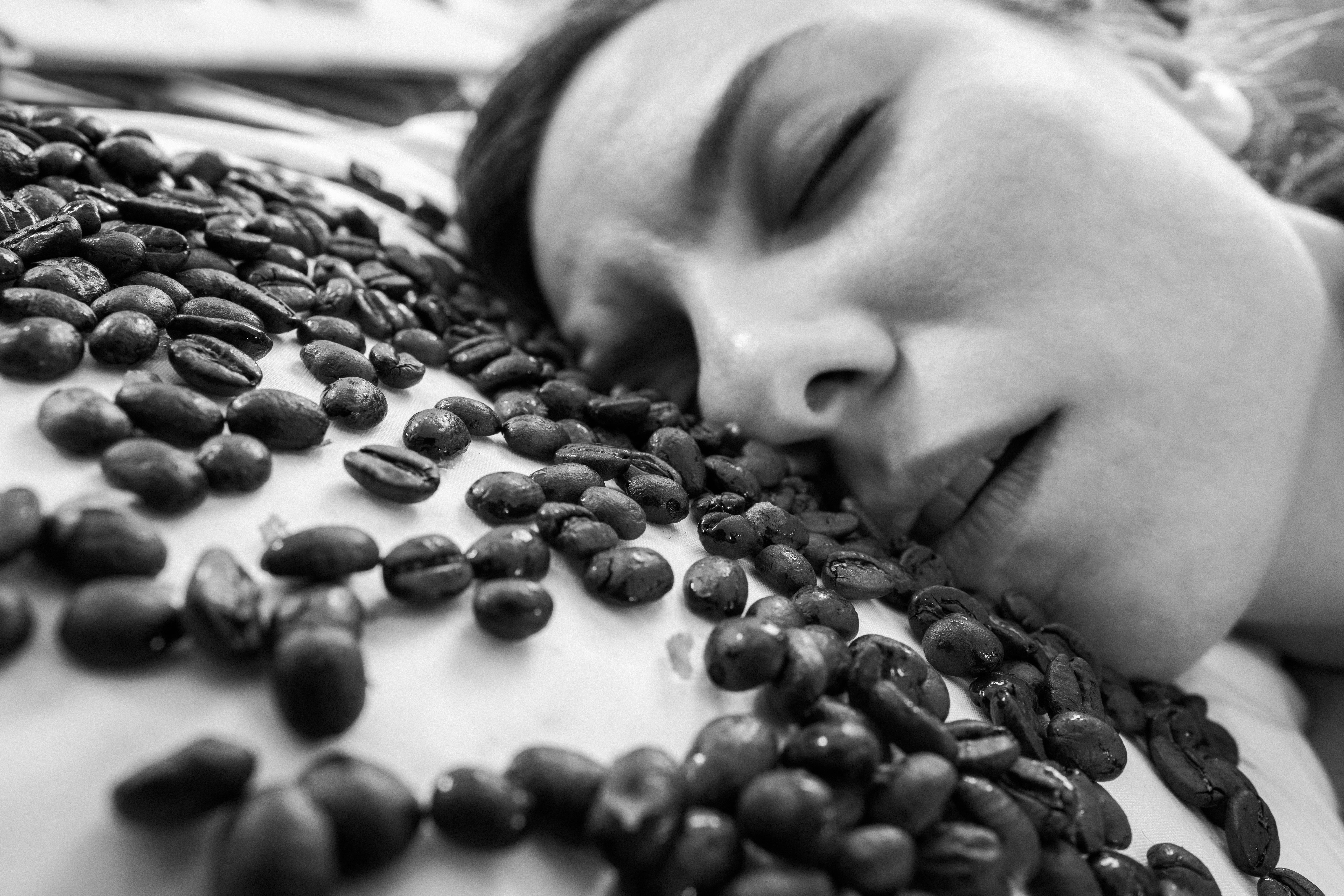 Gratis stockfoto downloaden gratisography-sleeping-coffee-beans
